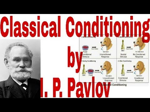 Classical conditioning theory by I.P. Pavlov