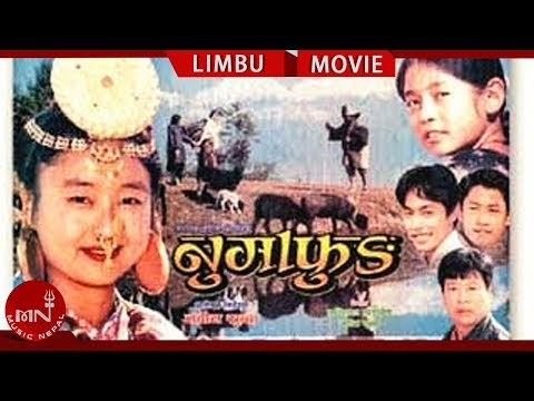 Superhit Limbu Movie  Numafung | Alok Nembang | Most International Awarded Movie
