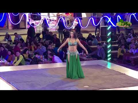 Dubai Holiday 2019 | Day 2 | Belly Dance Performance | Desert Safari Camp | Dubai UAE