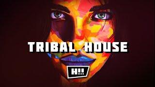 트 라이벌 하우스 및 프로그레시브 하우스 믹스 – 2021 년 4 월