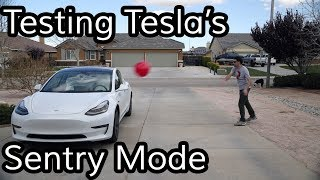 Download Does Tesla's Sentry Mode Work? Mp3 and Videos