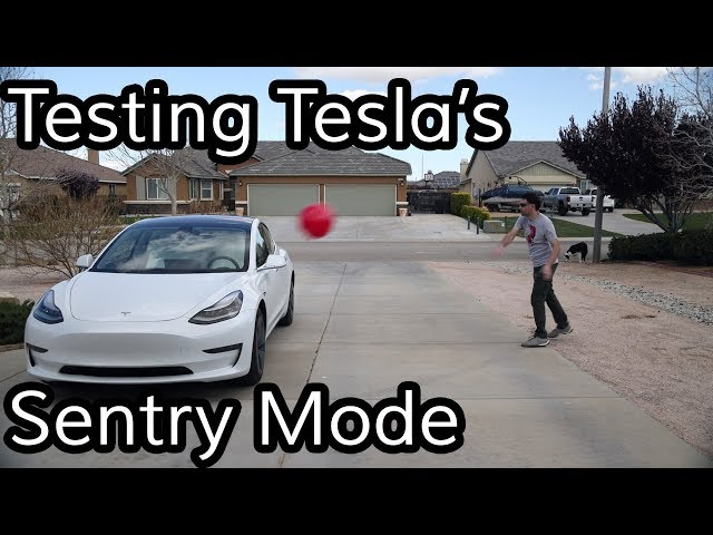 Does Tesla's Sentry Mode Work?