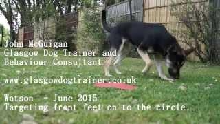 Watson  - June 2015 - Target Mat.