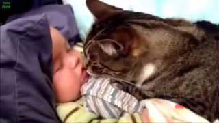 Best Babies and Animals Compilation