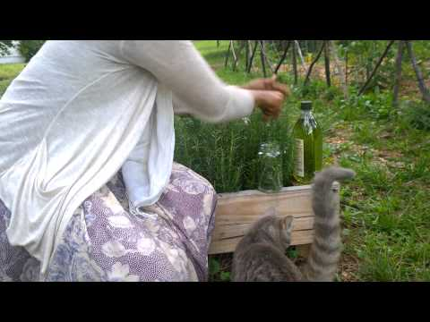 how to make rose water toner with essential oil
