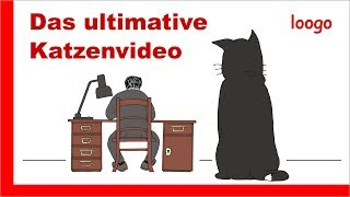 Das ultimative Katzenvideo
