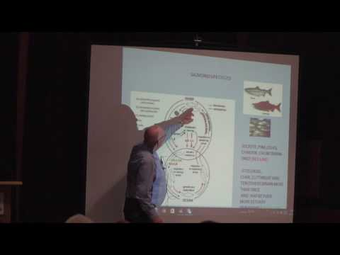 "Dr. Colin Levings ""Salmon in the Estuary"" -  Public Science Speaker Event, Dec 7 2016"