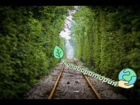Железнодорожная эколаборатория