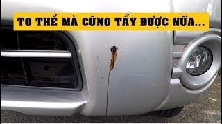 [Terocket] - Cách tẩy nhựa đường bám trên thân xe ô tô 30 giây siêu sạch ✔