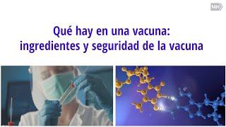 Qué hay en una vacuna: ingredientes y seguridad de la vacuna