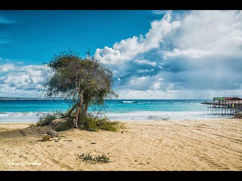 Island In The Sun - Kim Nicolaou (c-1980)