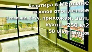 Квартира в Мерсине под ПМЖ, р-н Мезитли, газовое отопление, 50 м от моря, 250 м2, 3+2, 2 с/у, 11 эт