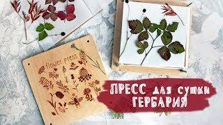 ОБЗОР | Пресс для сушки гербария | СКРАПБУКИНГ