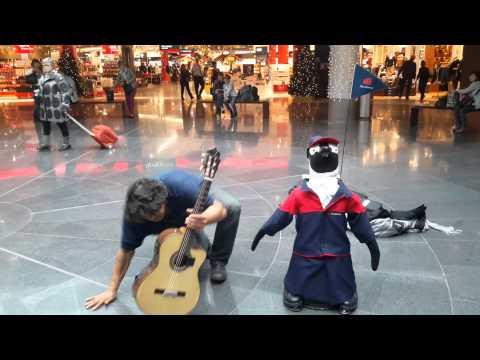 Lost Penguin Finds Love at Frankfurt Airport