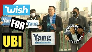 "Andrew Yang's ""WISH"" for Basic Income in New York City"