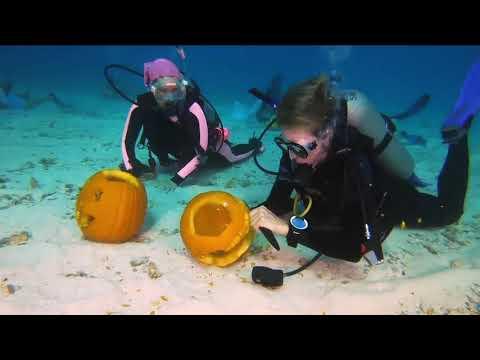 Ken Payne - Florida Keys Underwater Pumpkin Carving Contest