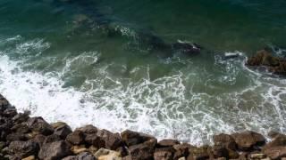6614 old pacific coast hwy ventura ca 93001 usa