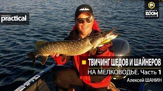 Твичинг шедов и шайнеров на мелководье Алексей Шанин Часть 1