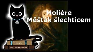 Moliére - Měšťák šlechticem (Mluvené slovo SK)