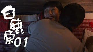 白鹿原 | White Deer 01【DVD版】(張嘉譯、秦海璐、何冰等主演)