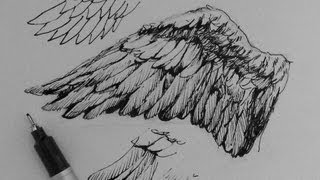 Pen & Ink Drawing Tutorials | How to draw wings
