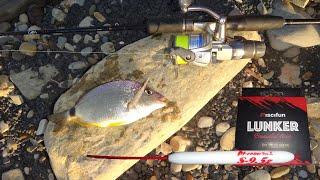 Чёрное море рыбалка в Джубге бомбарда Tict