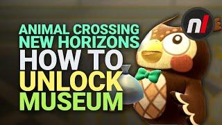 Animal Crossing: New Horizons - How to Unlock the Museum | Nintendo Switch