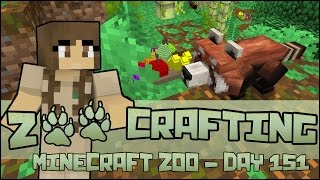 Zoo Crafting! Red Panda Exhibit!! - Episode #151 | Season 2