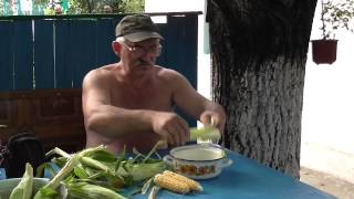 Как варить кукурузу. Молодая кукуруза. Вкусная кукуруза.