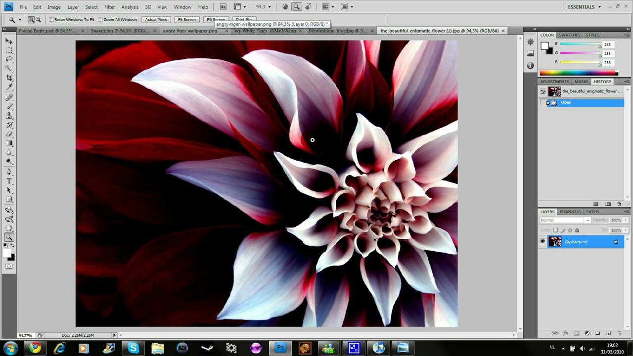 How to install the plug-in in Photoshop (Photoshop)