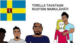Ruotsin maahanmuuttajalähiöt - Sveriges invandrare förorter