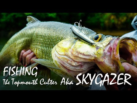 Fishing In China For Topmouth Culter Aka Skygazer