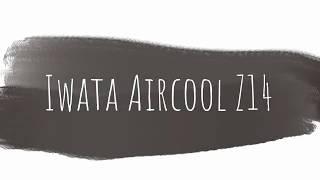 Iwata Aircooler Z14 Review