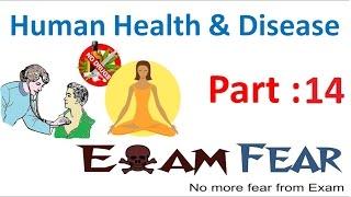Biology Human Health & Diseases part 14 (Antibodies & Antigens, B cells , T cells) class 12 XII