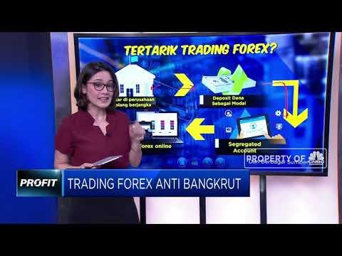 rahasia-trading-forex-anti-bangkrut!!