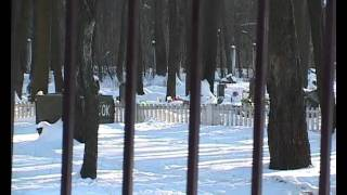 Кладбище домашних животных в Харькове