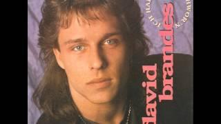 David Brandes - Ich Hab