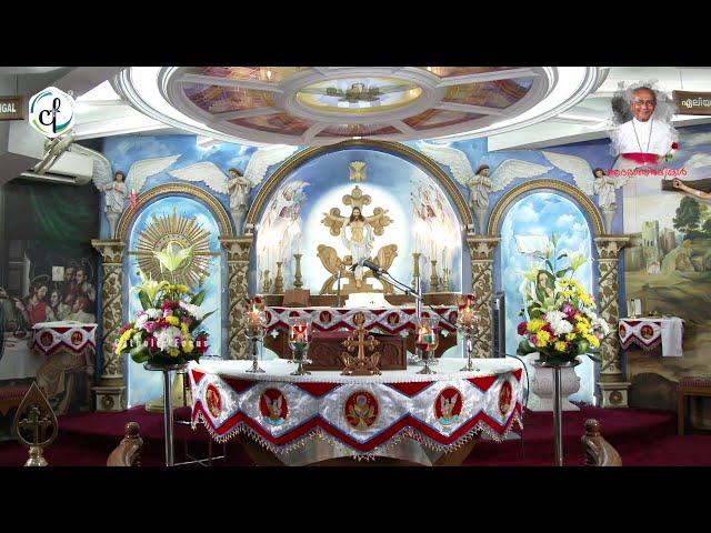 Holy Mass in Malayalam    September 27 Sunday    Syro Malabar    Catholic Focus