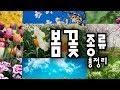 버스커 버스커 - 벚꽃 엔딩 - YouTube