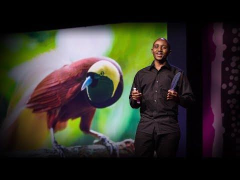 For the love of birds | Washington Wachira
