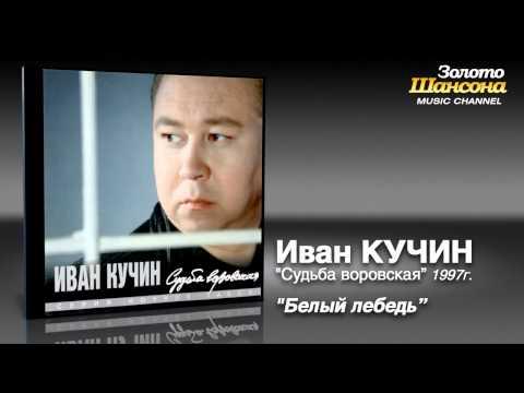 Иван Кучин -
