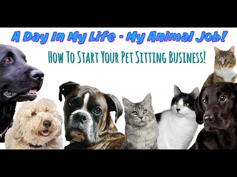 A DAY IN MY LIFE - MY ANIMAL JOB   Pet Sitting & How to Get Started!