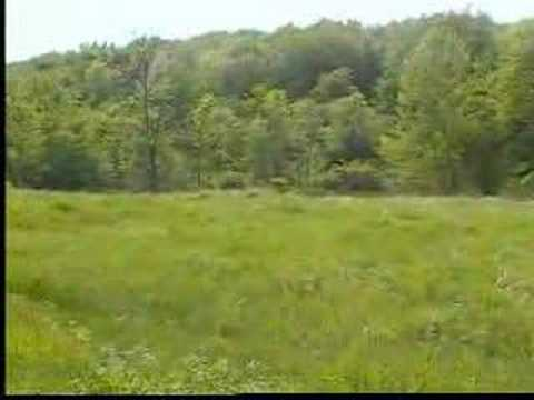 Pennsylvania Property For Sale 3 of 4