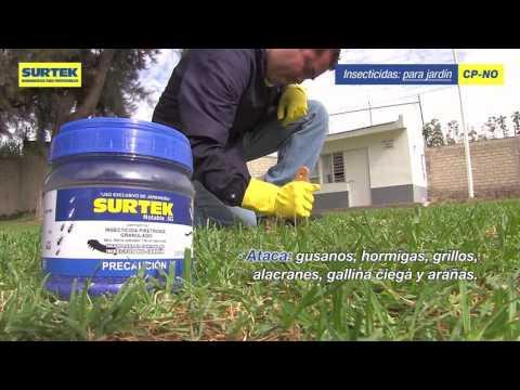 Insecticidas: Control de plagas Surtek URREA México