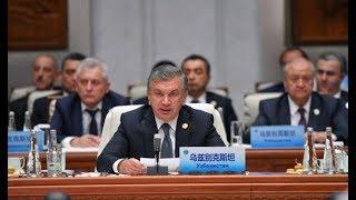 Встречи Президента Узбекистана в г.Циндао (O'zbekiston24)