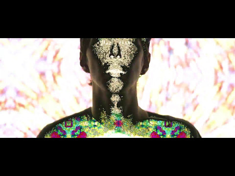 PAMPAS FIELDS NOISE FOUND art - Aura (OFFICIAL VIDEO)