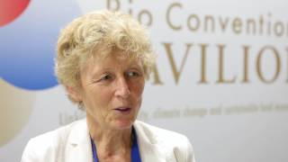 CIFOR at CBD COP13: An interview with Eva Muller