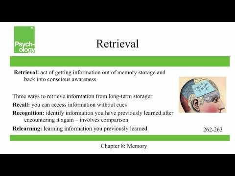 Openstax Psychology Ch8 Memory