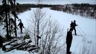 Raccoon Dog Hunting With Dachshunds