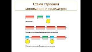 Органические соединения.  Мономеры, полимеры
